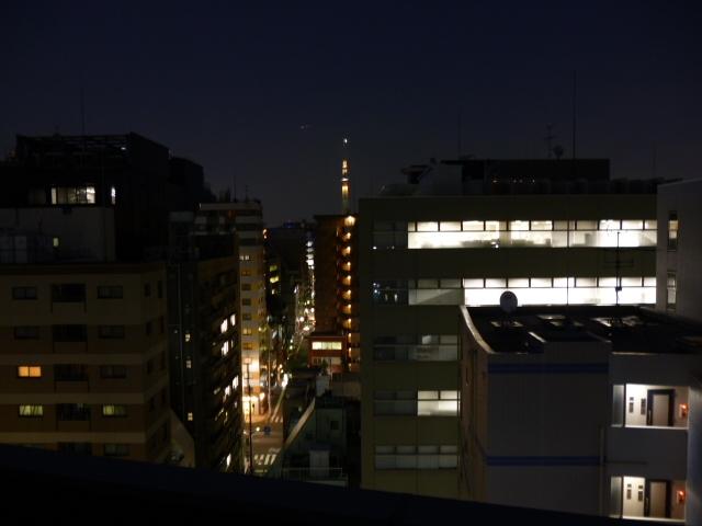 スカイツリー夜.JPG